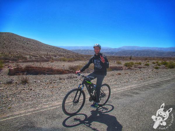 Ruta Provincial 33 - Valles Calchaquíes | Salta - Argentina | FredLee Na Estrada