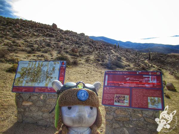 Sitio Arqueológico Tastil | Santa Rosa de Tastil – Salta – Argentina | FredLee Na Estrada