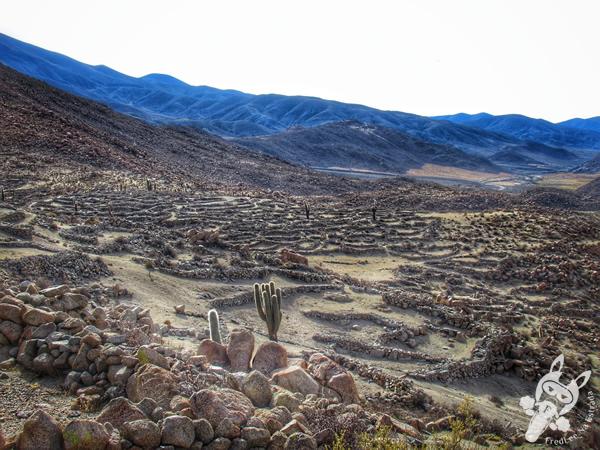Santa Rosa de Tastil – Salta – Argentina | FredLee Na Estrada