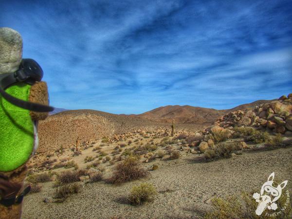 Museo de Sitio Tastil | Santa Rosa de Tastil – Salta – Argentina | FredLee Na Estrada