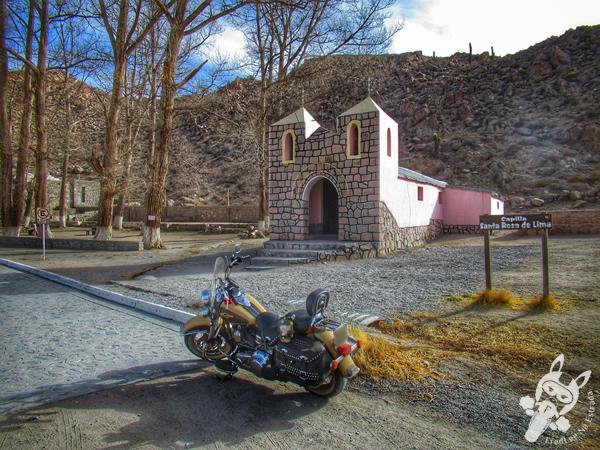 El Alfarcito - Salta - Argentina | FredLee Na Estrada