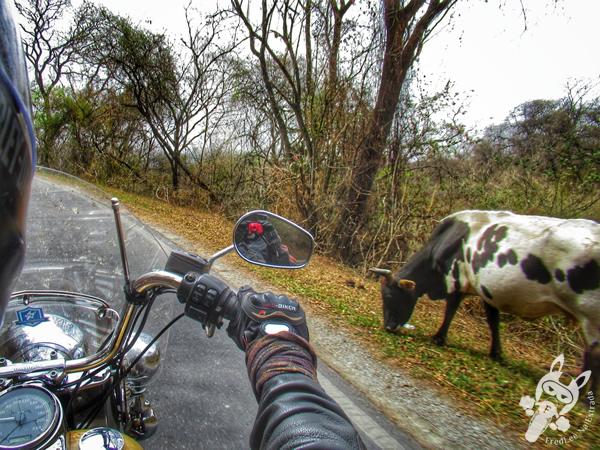 Camino de Cornisa - Ruta Nacional 9 | Argentina | FredLee Na Estrada