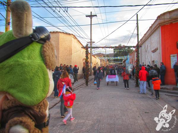 Virgen de Sixilera | San Francisco de Tilcara - Jujuy - Argentina | FredLee Na Estrada