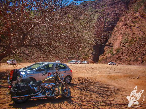 La Garganta del Diablo - Reserva Natural Manejada Quebrada de las Conchas | Salta - Argentina | FredLee Na Estrada