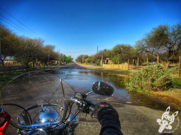 Ruta Nacional 40 | Argentina | FredLee Na Estrada