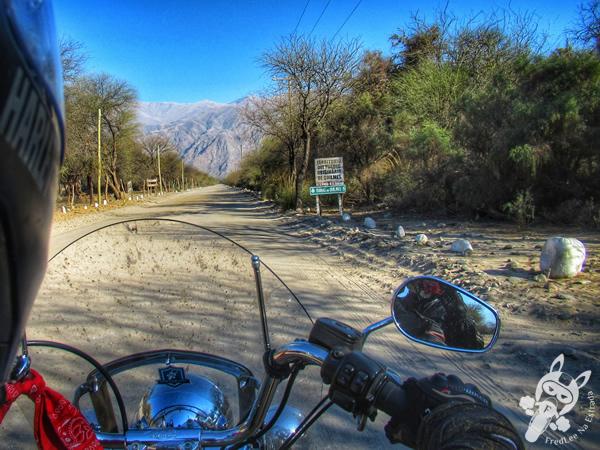 Estrada de acesso à Ciudad Sagrada de Quilmes | Amaicha del Valle - Tucumán - Argentina | FredLee Na Estrada