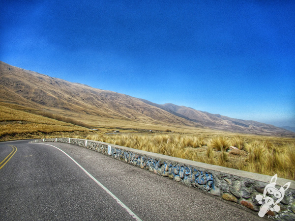 Ruta Provincial 307 | Argentina | FredLee Na Estrada