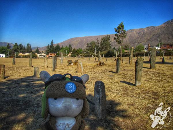 Reserva Arqueológica de los Menhires - Museo arqueológico a cielo abierto Los Menhires | El Mollar - Tucumán - Argentina | FredLee Na Estrada