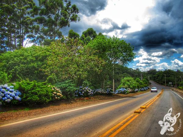 Gaurama - RS | FredLee Na Estrada