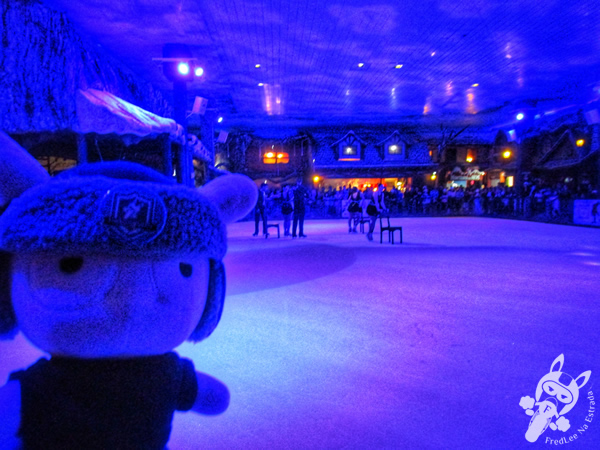 Espetáculo de patinação artística - Snowland | Gramado - RS | FredLee Na Estrada
