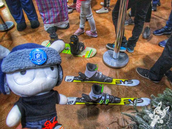 Snowland | Gramado - RS | FredLee Na Estrada