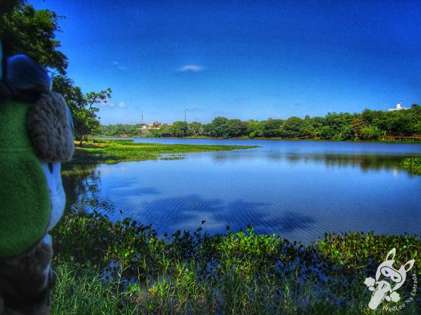 Lago de la República | Ciudad del Este - Alto Paraná - Paraguai | FredLee Na Estrada