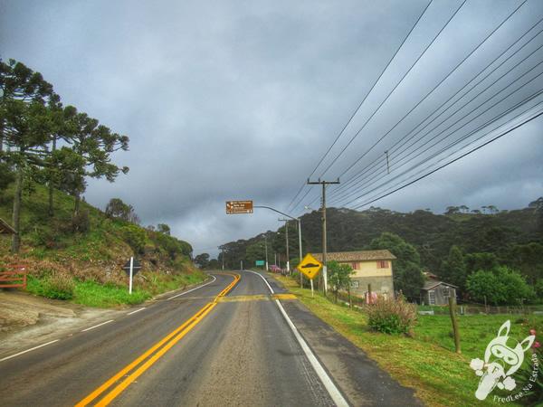 Rodovia | Bom Jardim da Serra - Santa Catarina - Brasil | FredLee Na Estrada