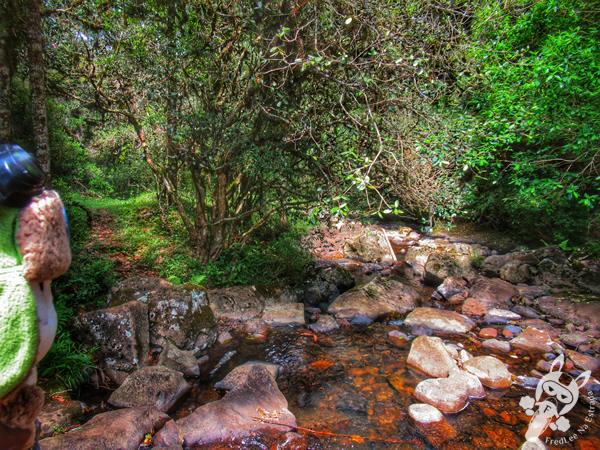 Sensorial Trail | Snow Valley | São Joaquim - Santa Catarina - Brasil | FredLee Na Estrada