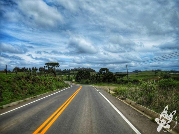 Rodovia SC-110 | São Joaquim - Santa Catarina - Brasil | FredLee Na Estrada