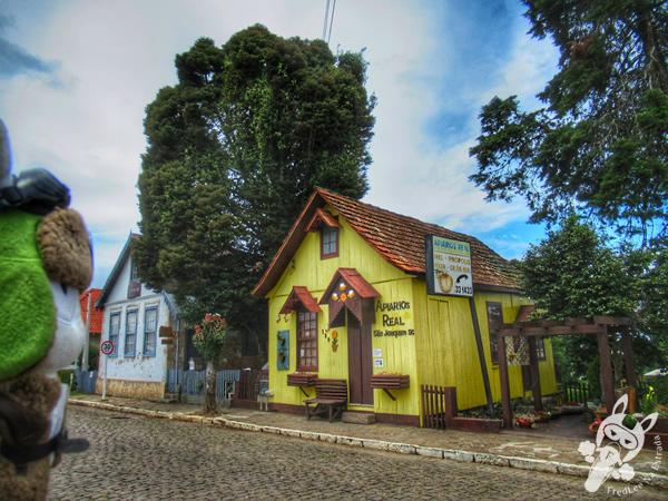 São Joaquim - Santa Catarina - Brasil | FredLee Na Estrada