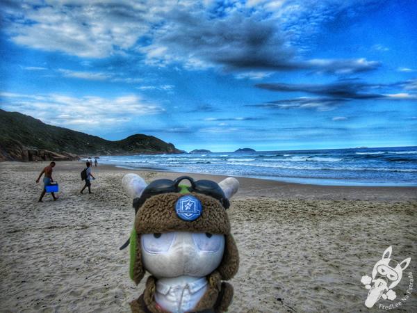 Prainha - Guarda do Embaú | Palhoça - Santa Catarina - Brasil | FredLee Na Estrada
