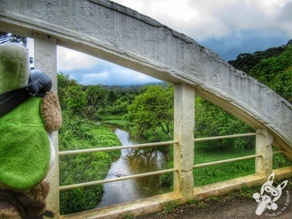 Ponte do Arco - Estrada da Graciosa | FredLee Na Estrada