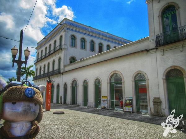Museu Pelé - Centro Histórico | Santos - São Paulo - Brasil | FredLee Na Estrada