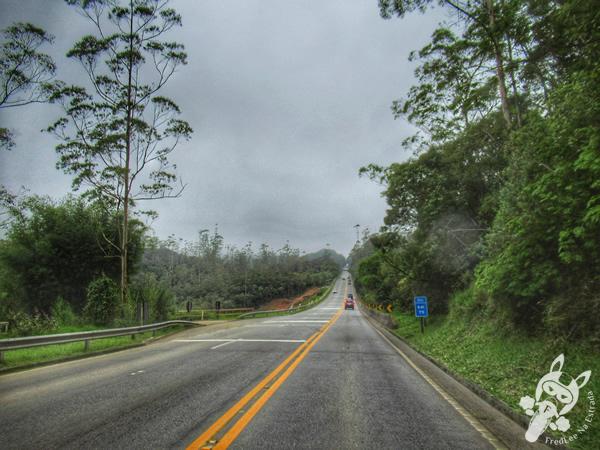 Rodovia Mogi-Bertioga - Rodovia SP-098 | FredLee Na Estrada