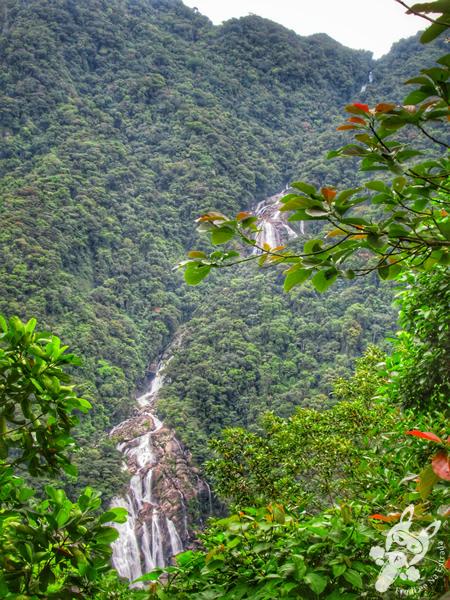 Cachoeira do Elefante | Bertioga - São Paulo - Brasil | FredLee Na Estrada