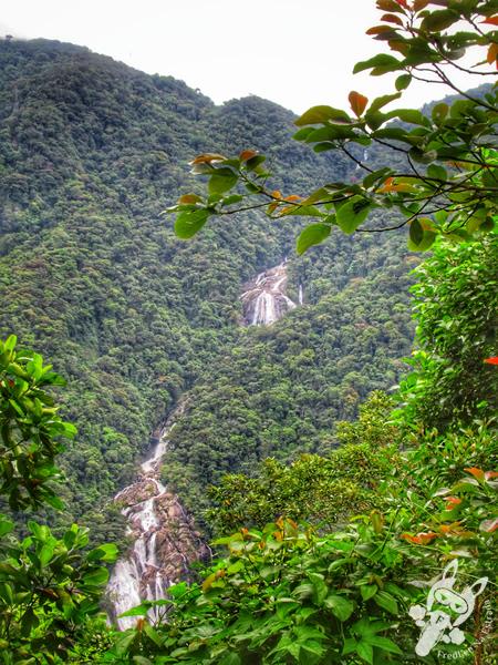 Mirante da Cachoeira do Elefante | Rodovia Mogi-Bertioga - Rodovia SP-098 | FredLee Na Estrada