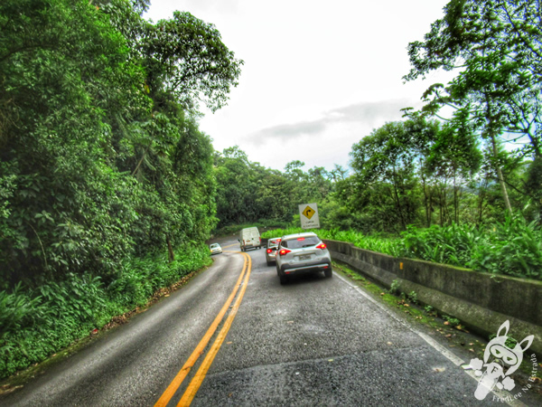 Rodovia Oswaldo Cruz - Rodovia SP-125 | FredLee Na Estrada