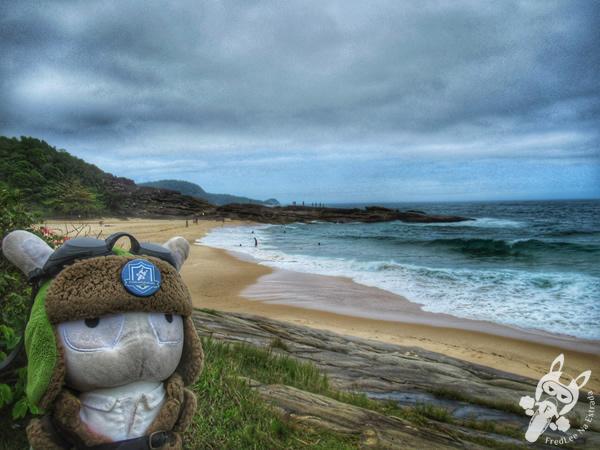 Praia do Cepilho | Trindade - Paraty - Rio de Janeiro - Brasil | FredLee Na Estrada