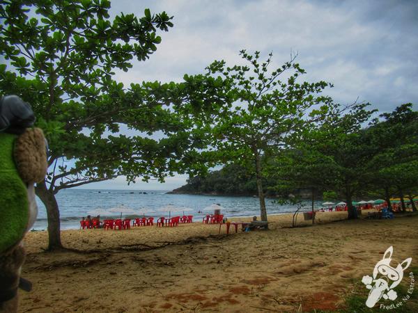 Praia do Rancho | Trindade - Paraty - Rio de Janeiro - Brasil | FredLee Na Estrada