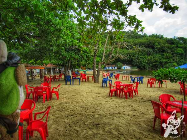 Praia do Pontal   Paraty - Rio de Janeiro - Brasil   FredLee Na Estrada