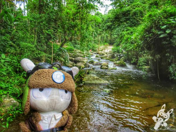 Poço do Tarzan   Paraty - Rio de Janeiro - Brasil   FredLee Na Estrada