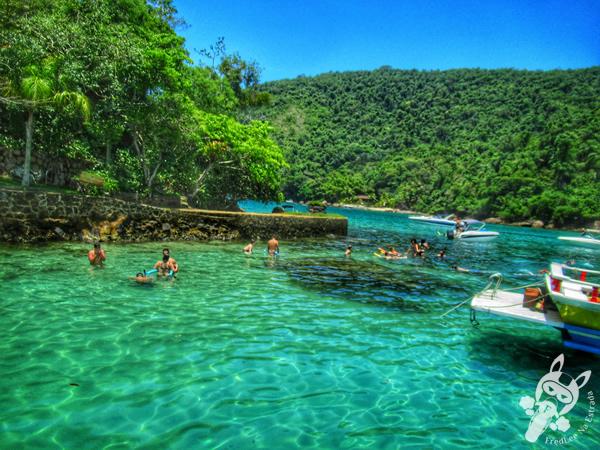 Ilha da Pescaria - Baía de Paraty | Paraty - Rio de Janeiro - Brasil | FredLee Na Estrada