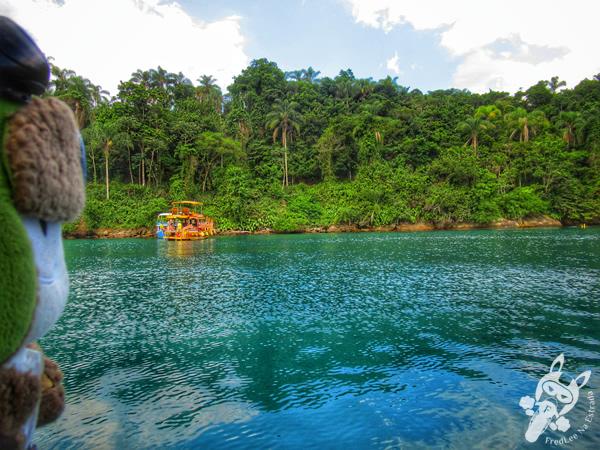 Ilha do Mantimento - Baía de Paraty | Paraty - Rio de Janeiro - Brasil | FredLee Na Estrada
