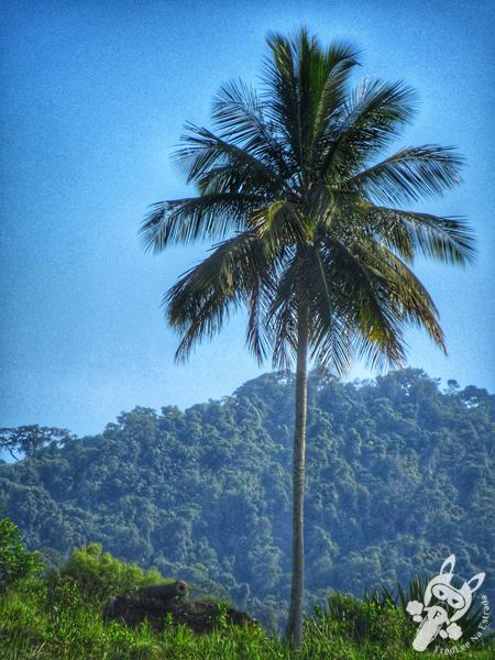 Forte da Ponta Grossa - Baía de Paraty | Paraty - Rio de Janeiro - Brasil | FredLee Na Estrada