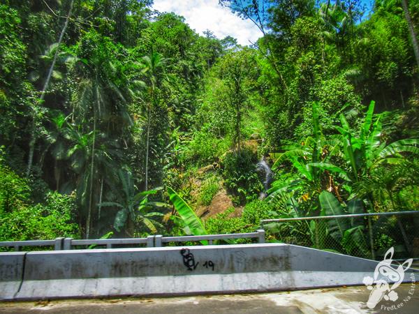 Rodovia Luiz Ascendino Dantas - Rodovia RJ-149 | FredLee Na Estrada