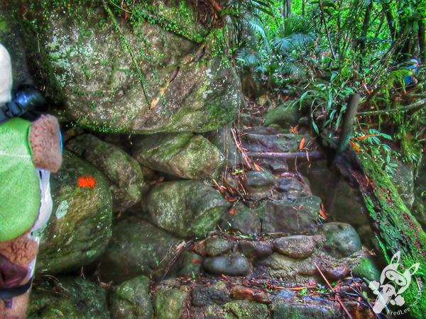 Trilha do Poço Verde | Parque Nacional da Serra dos Órgãos - Parnaso - ICMBio - Sede Guapimirim | FredLee Na Estrada