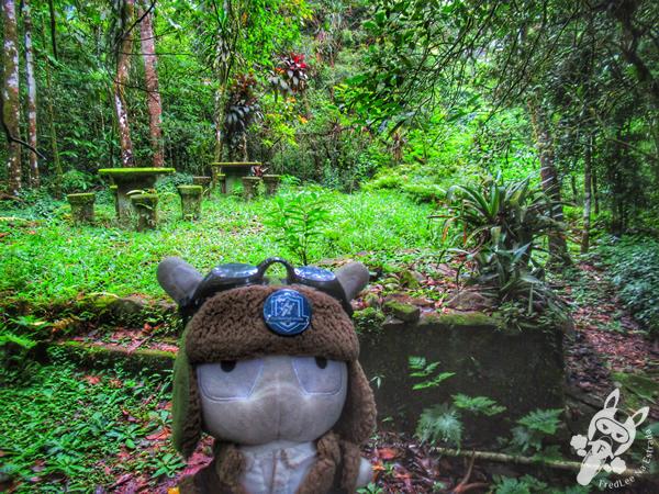 Trilha Mãe D'Água | Parque Nacional da Serra dos Órgãos - Parnaso - ICMBio - Sede Guapimirim | FredLee Na Estrada