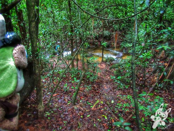 Trilha da Caninana | Parque Nacional da Serra dos Órgãos - Parnaso - ICMBio - Sede Guapimirim | FredLee Na Estrada