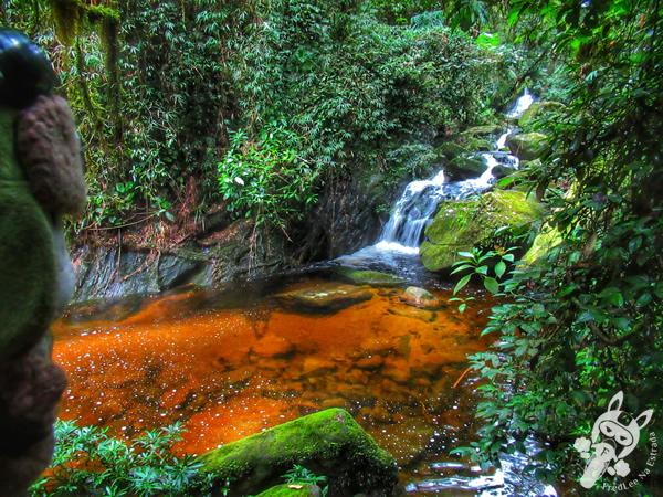 Cachoeira Ceci e Peri - Parque Nacional da Serra dos Órgãos - Parnaso - ICMBio - Sede Teresópolis | FredLee Na Estrada