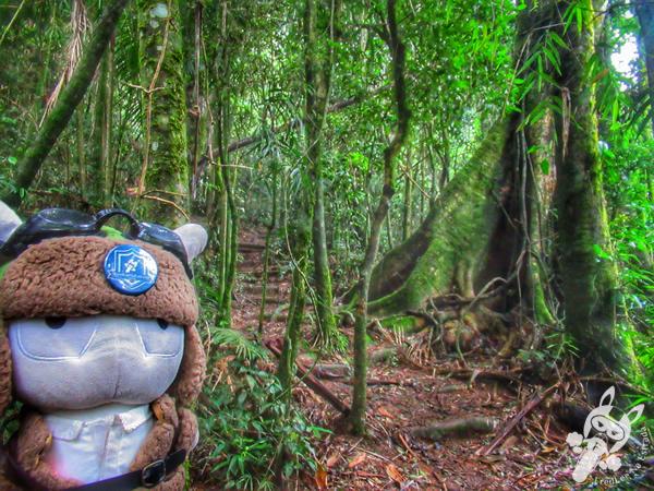 Trilha Cartão Postal - Parque Nacional da Serra dos Órgãos - Parnaso - ICMBio - Sede Teresópolis | FredLee Na Estrada