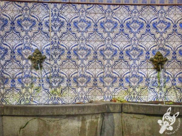 Fonte Judite | Teresópolis - Rio de Janeiro - Brasil | FredLee Na Estrada