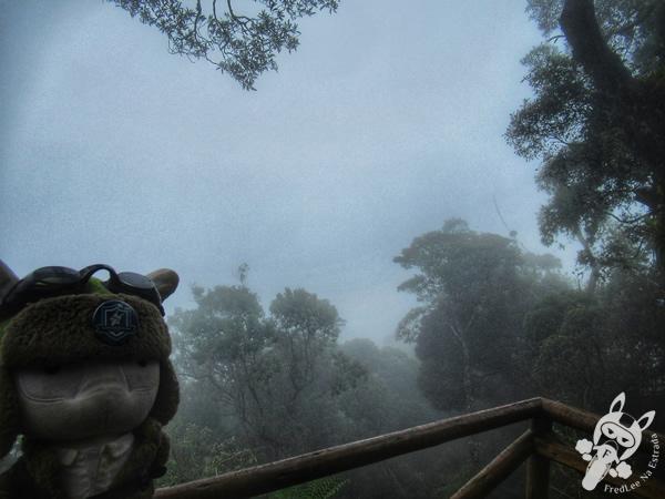 Mirante Borandá - Parque Nacional da Serra dos Órgãos – Parnaso | Teresópolis - Rio de Janeiro - Brasil | FredLee Na Estrada