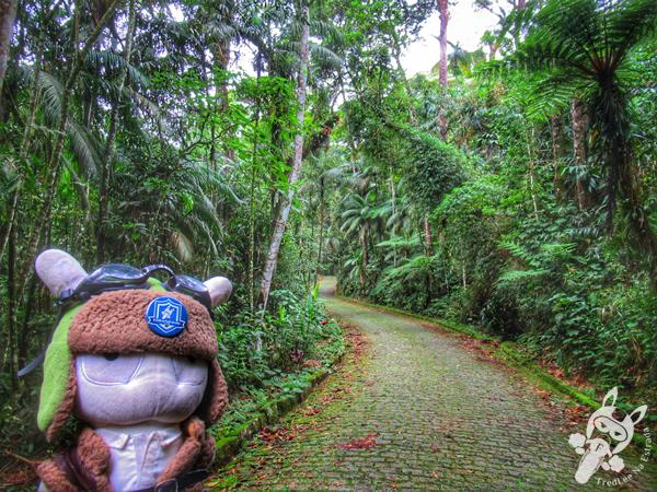 Estrada da Barragem - Parque Nacional da Serra dos Órgãos – Parnaso | Teresópolis - Rio de Janeiro - Brasil | FredLee Na Estrada