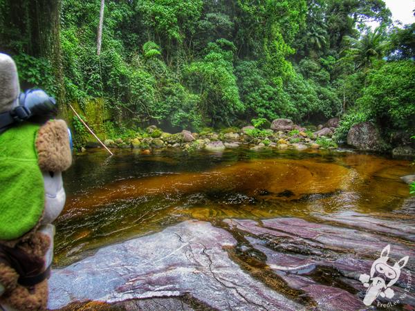 Poço do Castelo | Parque Nacional da Serra dos Órgãos – Parnaso | Teresópolis - Rio de Janeiro - Brasil | FredLee Na Estrada