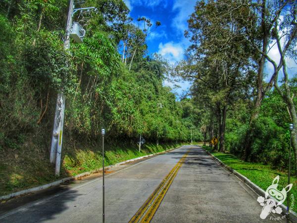 Estrada Itaipava-Teresópolis - Rodovia BR-495 | FredLee Na Estrada