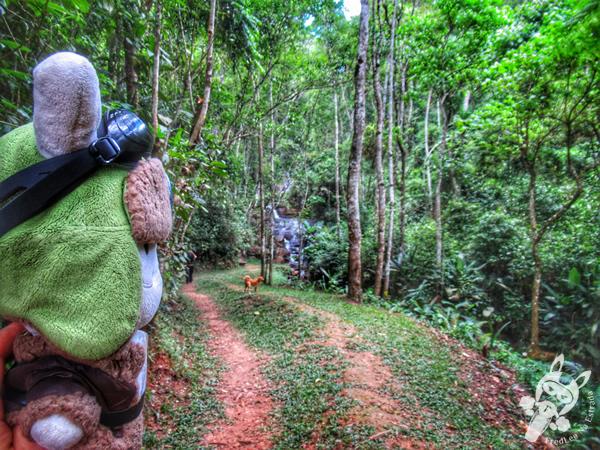 O Verdadeiro Sítio do Picapau Amarelo | Monteiro Lobato - São Paulo - Brasil | FredLee Na Estrada