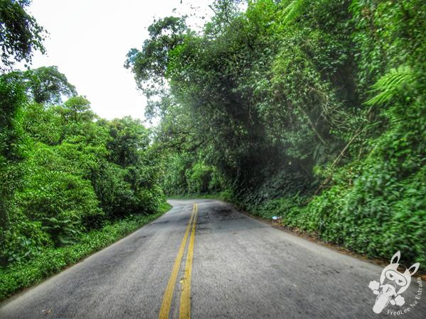 Serra da Cabeça da Anta | Rodovia SP-079 | FredLee Na Estrada