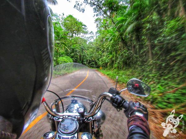 Parque Estadual Carlos Botelho (PECB) | Rodovia Nequinho Fogaça - Rodovia SP-139 | FredLee Na Estrada