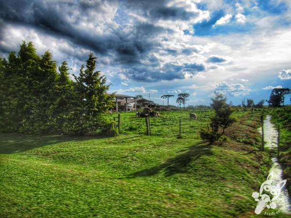 Colônia Witmarsum - Palmeira - Paraná - Brasil | FredLee Na Estrada
