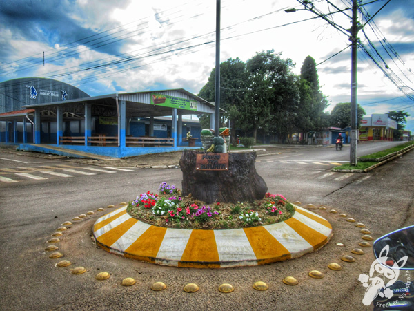Pinhão - Paraná - Brasil   FredLee Na Estrada